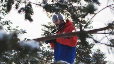 Photo of 4 יתרונות לגידול זקן בחודשי החורף הקרים