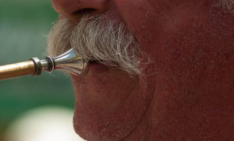 Photo of ווקס לשפם ואיך משתמשים בו: מדריך קצר